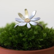 NEW – daisy ring with gold centre