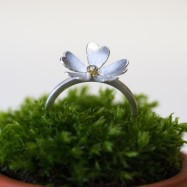 NEW – primrose ring with diamond